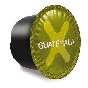 Xelecto Guatemala
